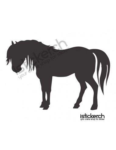 Pferde Pferd 24