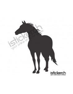 Pferd 26