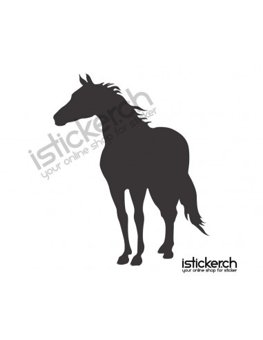 Pferde Pferd 26