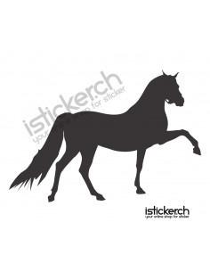 Pferd 28