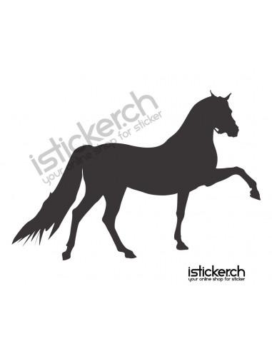 Pferde Pferd 28