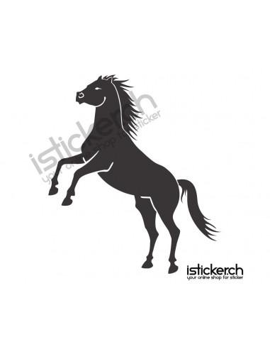 Pferde Pferd 29