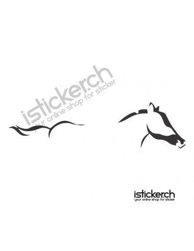 Pferd 31