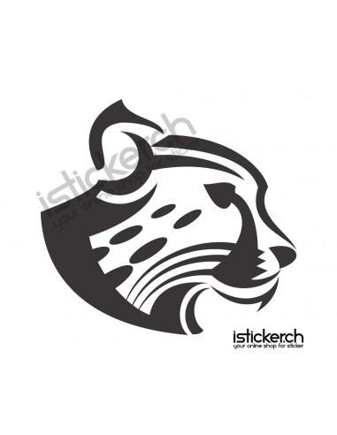 Raubkatzen Gepard