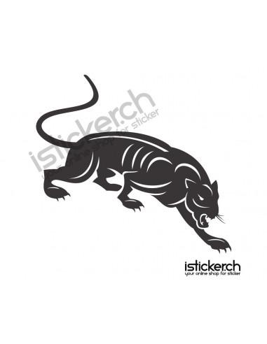 Raubkatzen Jaguar 2