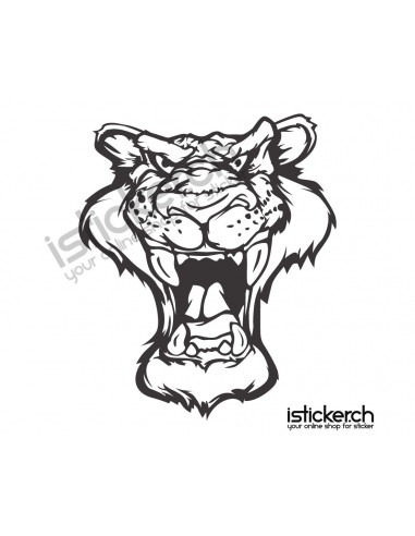 Raubkatzen Tiger 11