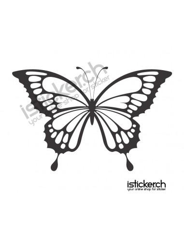 Schmetterling 9