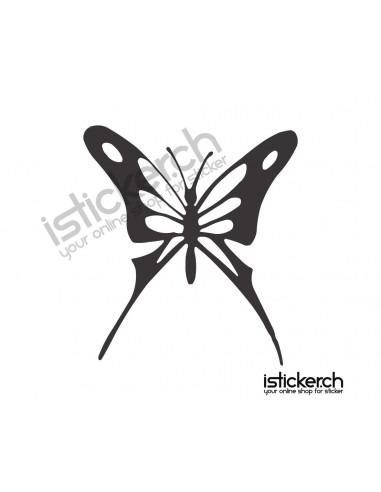 Schmetterlinge Schmetterling 19