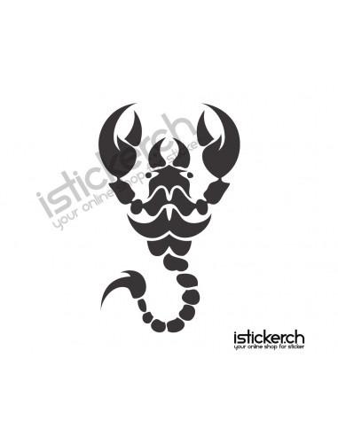 Skorpion 8