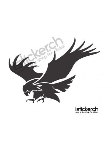 Vogel Adler 7