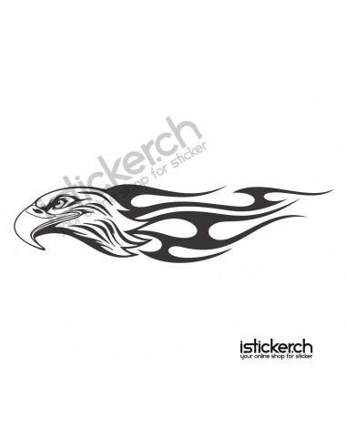 Vogel Adler 20