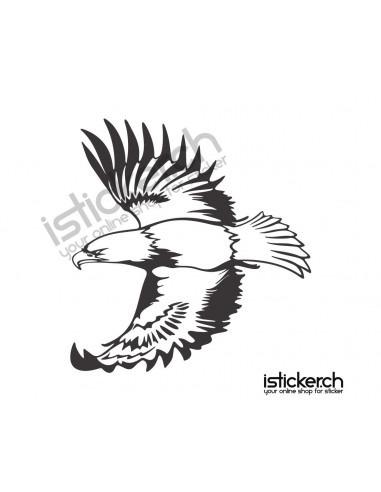 Vogel Adler 21