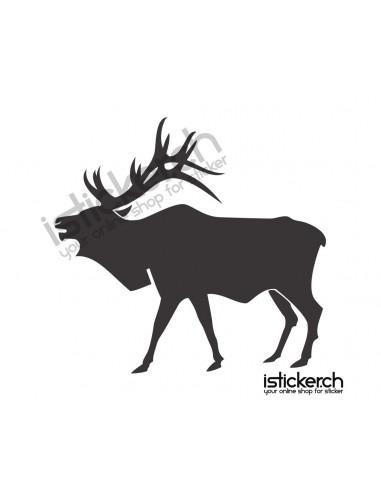 Wildtiere Hirsch 1