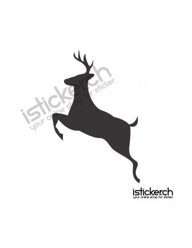 Wildtiere Hirsch 8