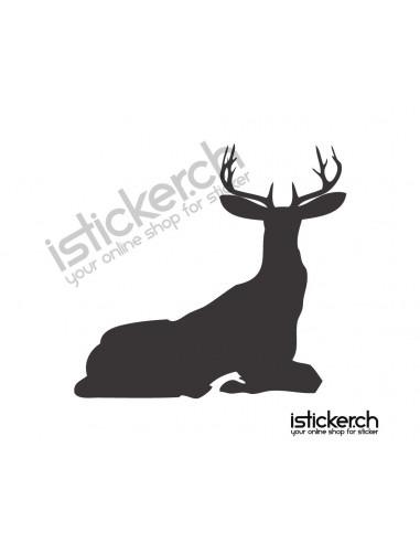 Wildtiere Hirsch 11