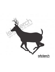 Hirsch 13