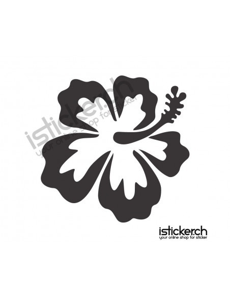 Blumen & Blüten 2