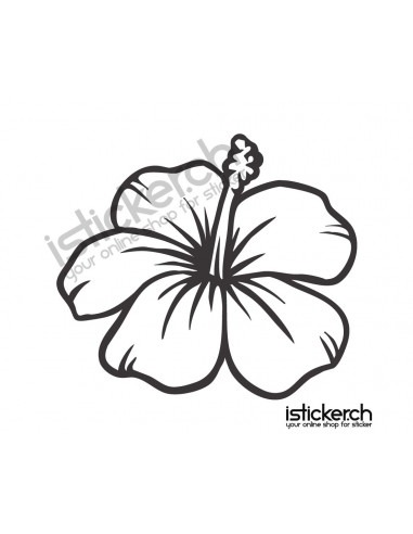Blumen & Blüten 4