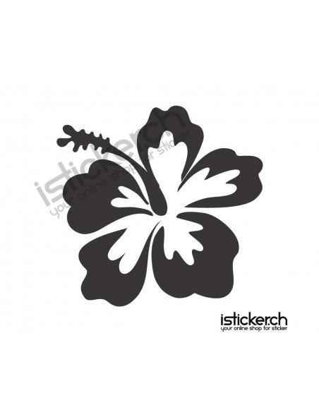 Blumen & Blüten 5