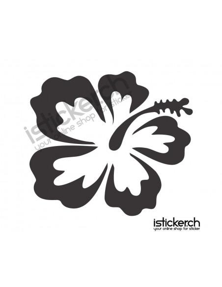 Blumen & Blüten 7