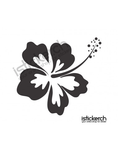 Blumen & Blüten Blumen & Blüten 10