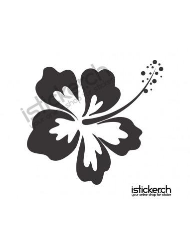 Blumen & Blüten 10