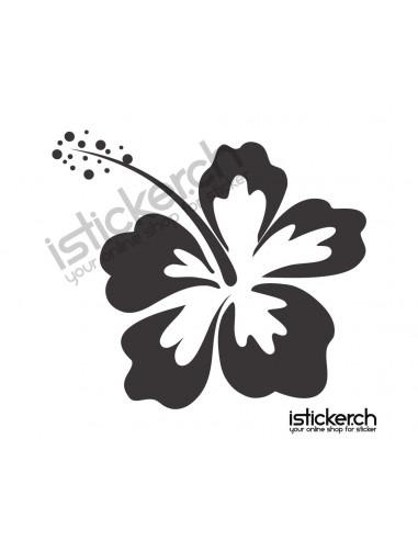 Blumen & Blüten Blumen & Blüten 11