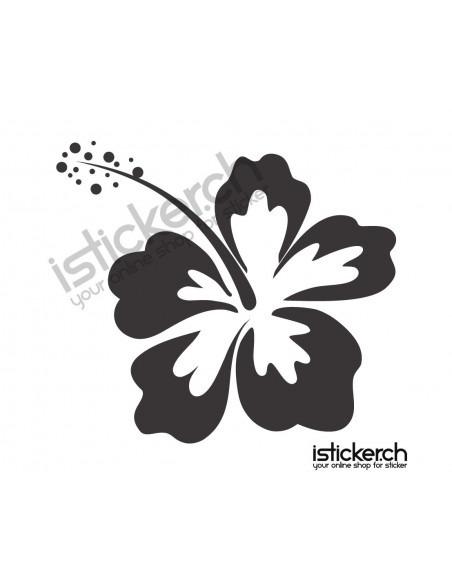 Blumen & Blüten 11