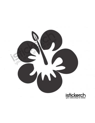 Blumen & Blüten 12