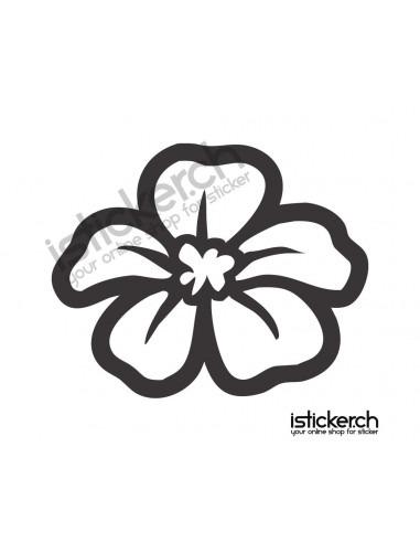 Blumen & Blüten 18