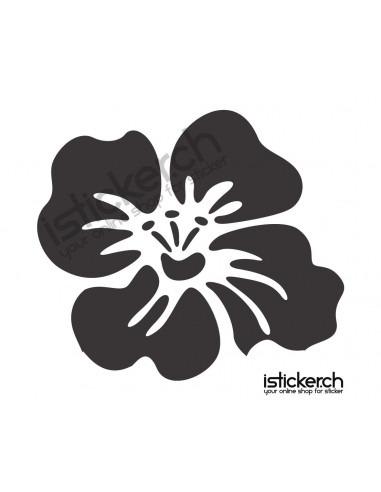Blumen & Blüten 20