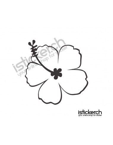 Blumen & Blüten Blumen & Blüten 21