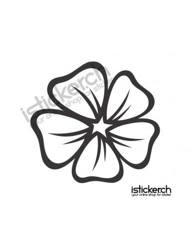 Blumen & Blüten 22