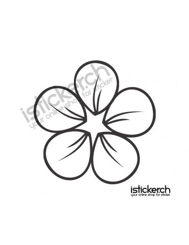 Blumen & Blüten 23