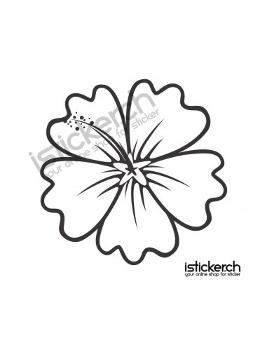 Blumen & Blüten 26