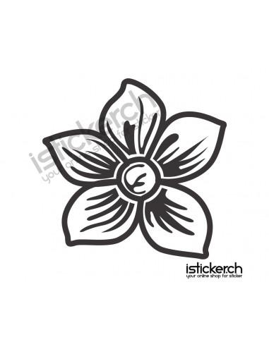 Blumen & Blüten 28