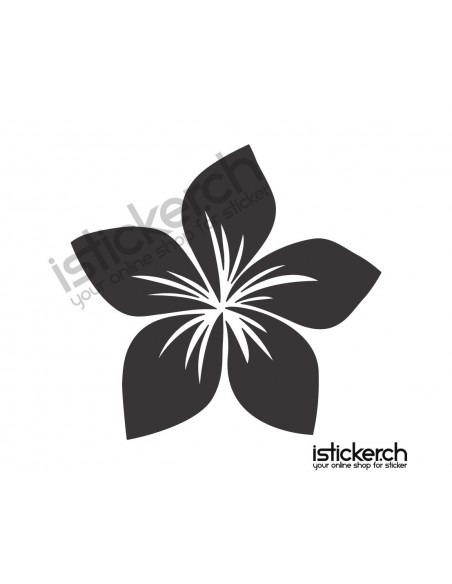 Blumen & Blüten 42