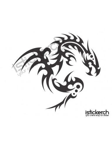 Drachen / Dragon 13