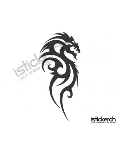 Drachen / Dragon 20